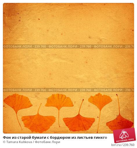 Купить «Фон из старой бумаги с бордюром из листьев гинкго», иллюстрация № 239760 (c) Tamara Kulikova / Фотобанк Лори