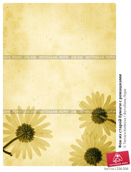 Купить «Фон из старой бумаги с ромашками», иллюстрация № 236036 (c) Tamara Kulikova / Фотобанк Лори