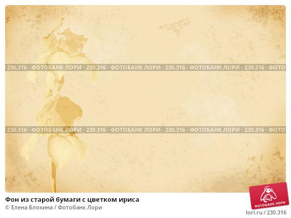 Купить «Фон из старой бумаги с цветком ириса», фото № 230316, снято 21 ноября 2017 г. (c) Елена Блохина / Фотобанк Лори