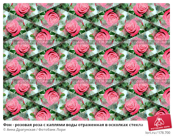 Фон - розовая роза с каплями воды отраженная в осколках стекла, фото № 178700, снято 25 февраля 2017 г. (c) Анна Драгунская / Фотобанк Лори