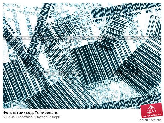 Фон: штрихкод. Тонировано, фото № 224284, снято 16 марта 2008 г. (c) Роман Коротаев / Фотобанк Лори