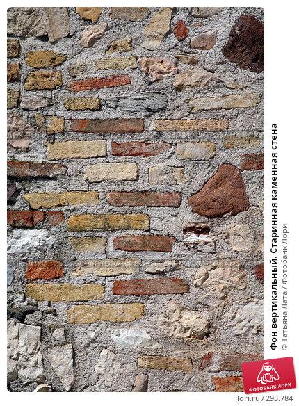 Фон вертикальный. Старинная каменная стена, фото № 293784, снято 26 апреля 2008 г. (c) Татьяна Лата / Фотобанк Лори