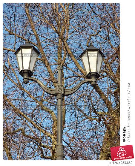 Купить «Фонарь», фото № 233852, снято 26 февраля 2008 г. (c) Бяков Вячеслав / Фотобанк Лори