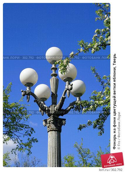 Купить «Фонарь на фоне цветущей ветки яблони, Тверь», фото № 302792, снято 9 мая 2008 г. (c) Fro / Фотобанк Лори