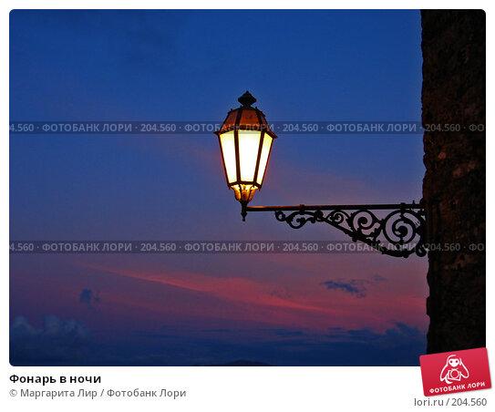 Купить «Фонарь в ночи», фото № 204560, снято 6 ноября 2006 г. (c) Маргарита Лир / Фотобанк Лори