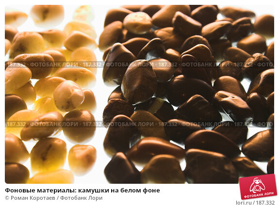 Купить «Фоновые материалы: камушки на белом фоне», фото № 187332, снято 26 января 2008 г. (c) Роман Коротаев / Фотобанк Лори