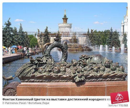 Фонтан Каменный Цветок на выставке достижений народного хозяйства, фото № 116068, снято 12 июня 2007 г. (c) Parmenov Pavel / Фотобанк Лори