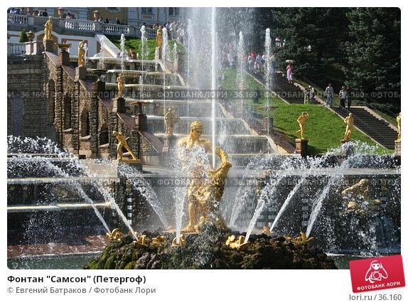 "Фонтан ""Самсон"" (Петергоф), фото № 36160, снято 8 августа 2006 г. (c) Евгений Батраков / Фотобанк Лори"