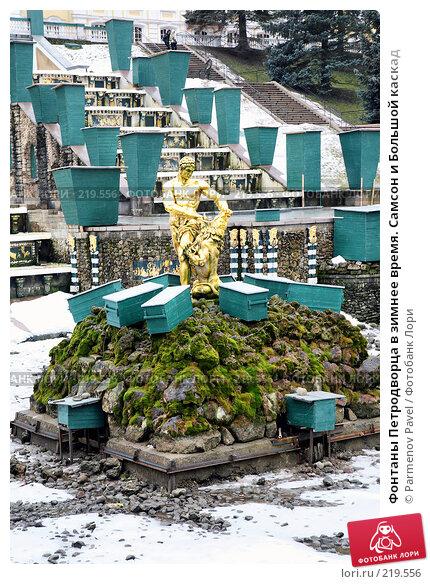 Фонтаны Петродворца в зимнее время. Самсон и Большой каскад, фото № 219556, снято 13 февраля 2008 г. (c) Parmenov Pavel / Фотобанк Лори