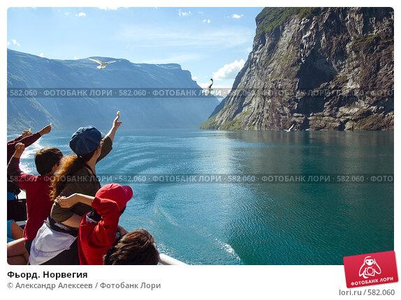 Купить «Фьорд. Норвегия», эксклюзивное фото № 582060, снято 2 августа 2006 г. (c) Александр Алексеев / Фотобанк Лори