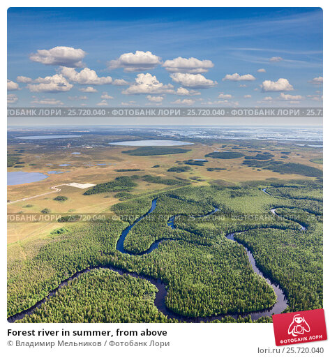 Forest river in summer, from above, фото № 25720040, снято 21 июня 2015 г. (c) Владимир Мельников / Фотобанк Лори