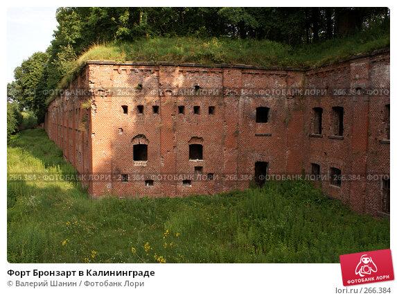 Купить «Форт Бронзарт в Калининграде», фото № 266384, снято 22 июля 2007 г. (c) Валерий Шанин / Фотобанк Лори