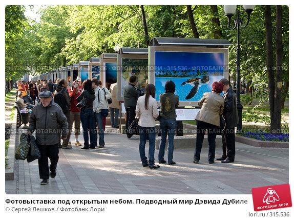 Купить «Фотовыставка под открытым небом. Подводный мир Дэвида Дубиле», фото № 315536, снято 8 июня 2008 г. (c) Сергей Лешков / Фотобанк Лори