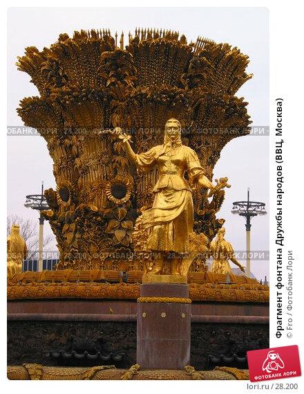 Фрагмент фонтана Дружбы народов (ВВЦ, Москва), фото № 28200, снято 13 ноября 2004 г. (c) Fro / Фотобанк Лори
