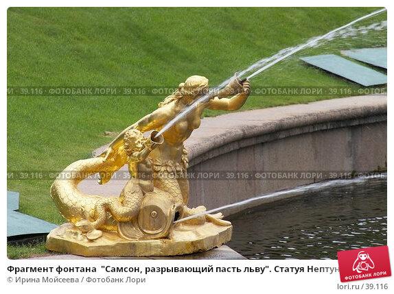 """Фрагмент фонтана  """"Самсон, разрывающий пасть льву"""". Статуя Нептуна. Петергоф, эксклюзивное фото № 39116, снято 25 июня 2006 г. (c) Ирина Мойсеева / Фотобанк Лори"""