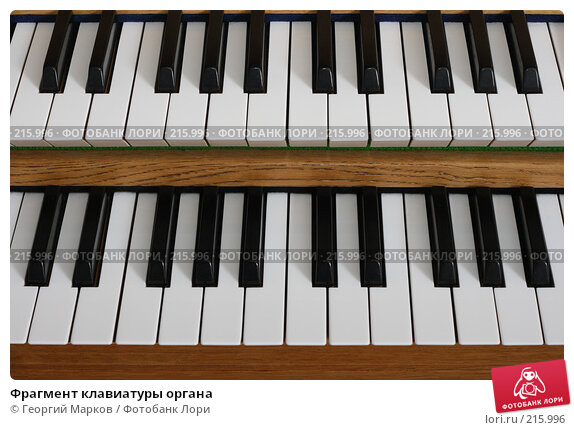 Фрагмент клавиатуры органа, фото № 215996, снято 28 января 2008 г. (c) Георгий Марков / Фотобанк Лори