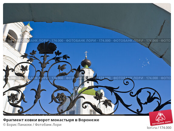 Фрагмент ковки ворот монастыря в Воронеже, фото № 174000, снято 30 декабря 2007 г. (c) Борис Панасюк / Фотобанк Лори