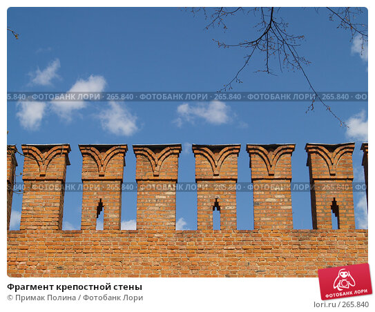Купить «Фрагмент крепостной стены», фото № 265840, снято 26 апреля 2008 г. (c) Примак Полина / Фотобанк Лори