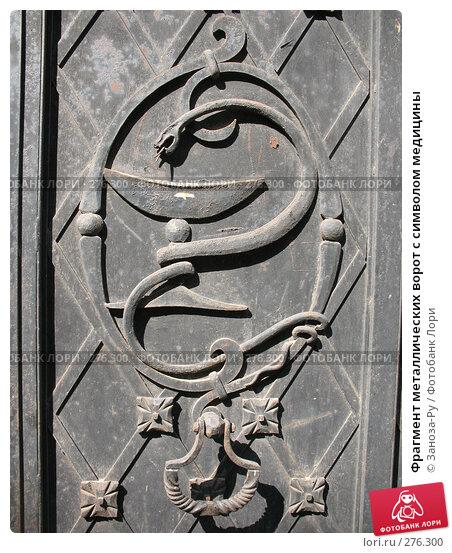 Фрагмент металлических ворот с символом медицины, фото № 276300, снято 2 мая 2008 г. (c) Заноза-Ру / Фотобанк Лори