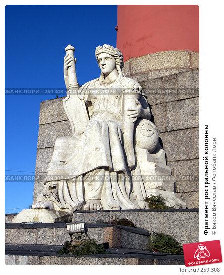 Купить «Фрагмент ростральной колонны», фото № 259308, снято 26 февраля 2008 г. (c) Бяков Вячеслав / Фотобанк Лори