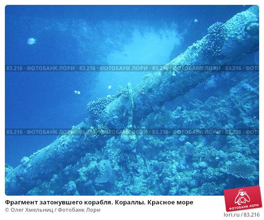 Фрагмент затонувшего корабля. Кораллы. Красное море, фото № 83216, снято 9 марта 2005 г. (c) Олег Хмельниц / Фотобанк Лори