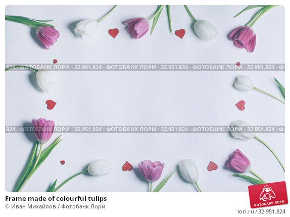 Frame made of colourful tulips. Стоковое фото, фотограф Иван Михайлов / Фотобанк Лори