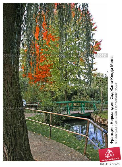 Франция. Нормандия. Сад Жана-Клода Моне, фото № 8528, снято 18 октября 2005 г. (c) Валерий Ситников / Фотобанк Лори
