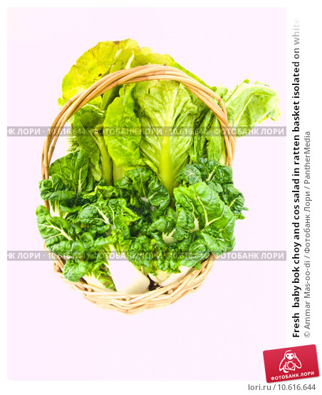 Fresh  baby bok choy and cos salad in ratten basket isolated on white. Стоковое фото, фотограф Ammar Mas-oo-di / PantherMedia / Фотобанк Лори