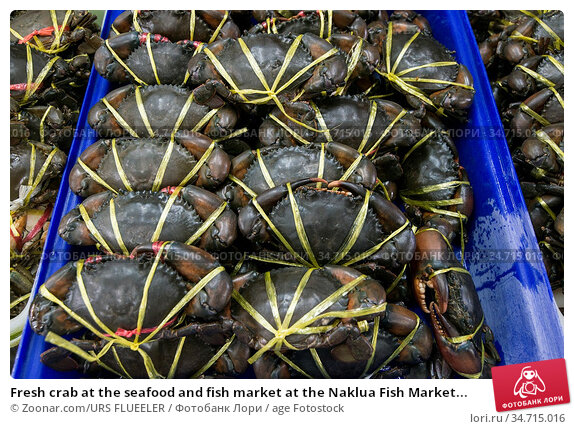Fresh crab at the seafood and fish market at the Naklua Fish Market... Стоковое фото, фотограф Zoonar.com/URS FLUEELER / age Fotostock / Фотобанк Лори