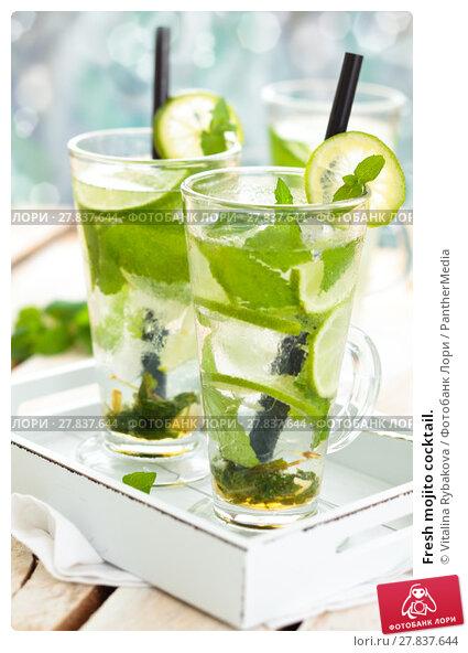 Купить «Fresh mojito cocktail.», фото № 27837644, снято 20 февраля 2018 г. (c) PantherMedia / Фотобанк Лори