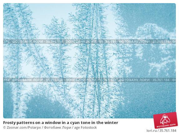 Frosty patterns on a window in a cyan tone in the winter. Стоковое фото, фотограф Zoonar.com/Polarpx / age Fotostock / Фотобанк Лори