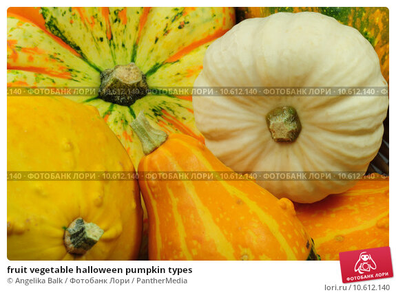 fruit vegetable halloween pumpkin types. Стоковое фото, фотограф Angelika Balk / PantherMedia / Фотобанк Лори