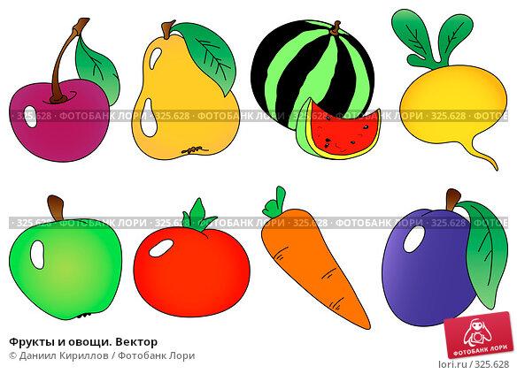 Фрукты и овощи. Вектор, иллюстрация № 325628 (c) Даниил Кириллов / Фотобанк Лори