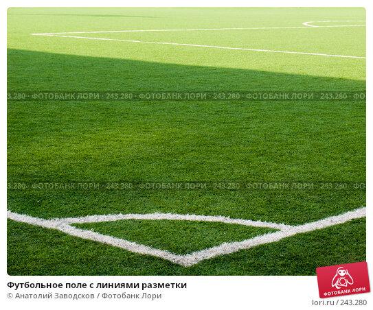 Футбольное поле с линиями разметки, фото № 243280, снято 17 октября 2007 г. (c) Анатолий Заводсков / Фотобанк Лори