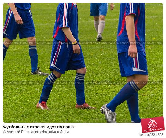 Футбольные игроки  идут по полю, фото № 321308, снято 12 июня 2008 г. (c) Алексей Пантелеев / Фотобанк Лори