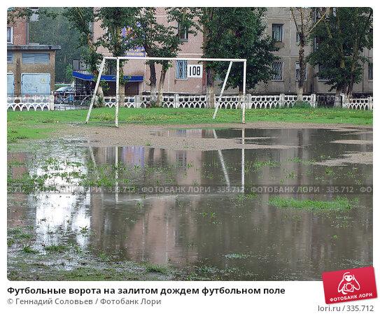 Футбольные ворота на залитом дождем футбольном поле, фото № 335712, снято 23 июня 2008 г. (c) Геннадий Соловьев / Фотобанк Лори