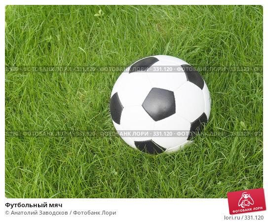 Футбольный мяч, фото № 331120, снято 21 июня 2008 г. (c) Анатолий Заводсков / Фотобанк Лори