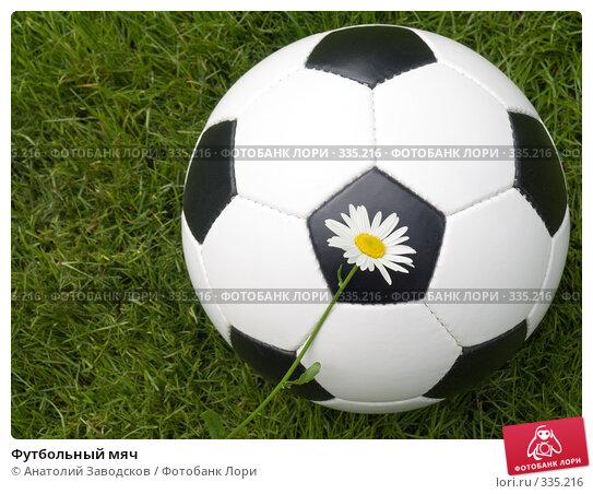 Купить «Футбольный мяч», фото № 335216, снято 22 июня 2008 г. (c) Анатолий Заводсков / Фотобанк Лори