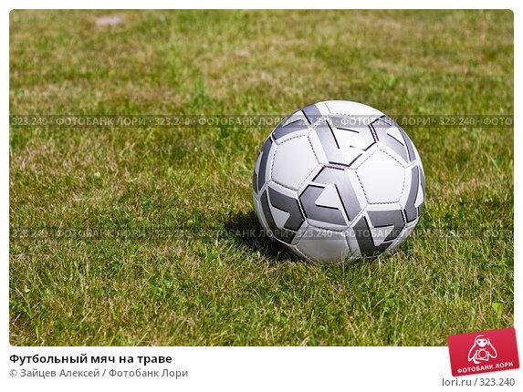 Футбольный мяч на траве, фото № 323240, снято 14 июня 2008 г. (c) Зайцев Алексей / Фотобанк Лори