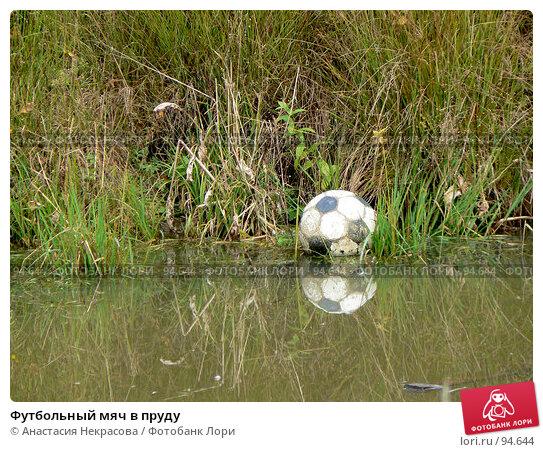 Футбольный мяч в пруду, фото № 94644, снято 30 сентября 2007 г. (c) Анастасия Некрасова / Фотобанк Лори