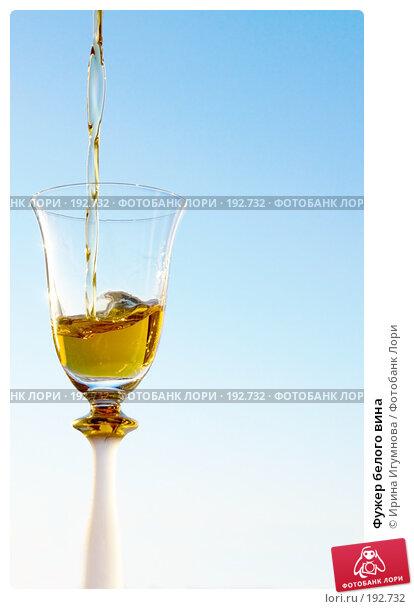 Купить «Фужер белого вина», фото № 192732, снято 8 декабря 2007 г. (c) Ирина Игумнова / Фотобанк Лори