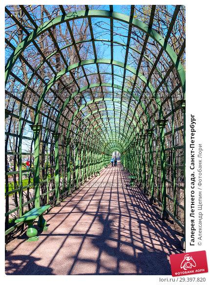 Купить «Галерея Летнего сада. Санкт-Петербург», эксклюзивное фото № 29397820, снято 9 мая 2018 г. (c) Александр Щепин / Фотобанк Лори