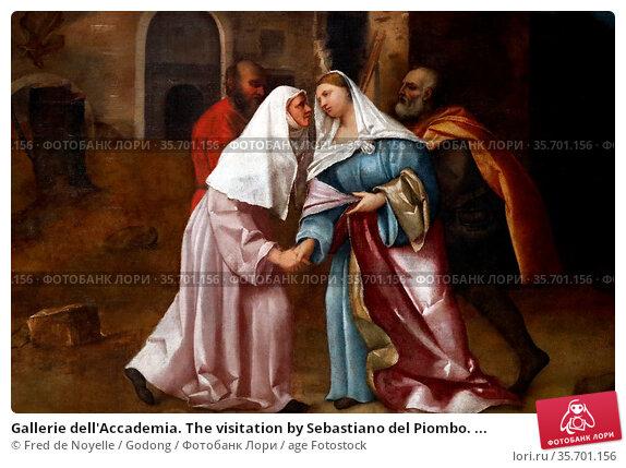 Gallerie dell'Accademia. The visitation by Sebastiano del Piombo. ... Стоковое фото, фотограф Fred de Noyelle / Godong / age Fotostock / Фотобанк Лори