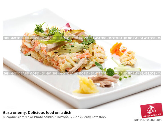 Gastronomy. Delicious food on a dish. Стоковое фото, фотограф Zoonar.com/Yeko Photo Studio / easy Fotostock / Фотобанк Лори