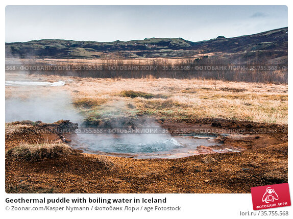 Geothermal puddle with boiling water in Iceland. Стоковое фото, фотограф Zoonar.com/Kasper Nymann / age Fotostock / Фотобанк Лори