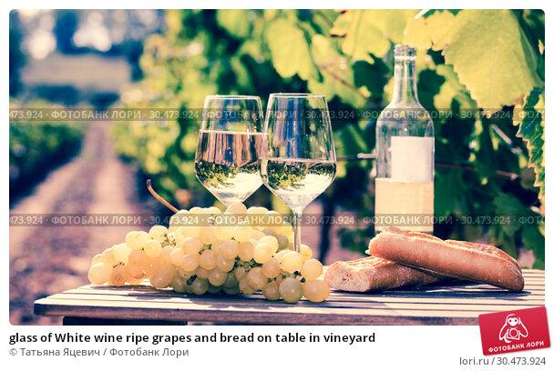 Купить «glass of White wine ripe grapes and bread on table in vineyard», фото № 30473924, снято 27 мая 2019 г. (c) Татьяна Яцевич / Фотобанк Лори