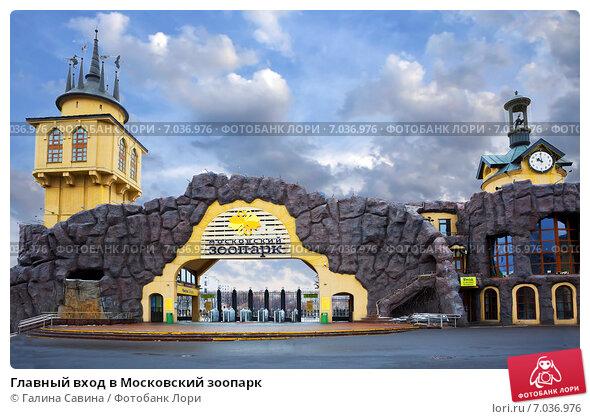 Московский зоопарк   ВКонтакте