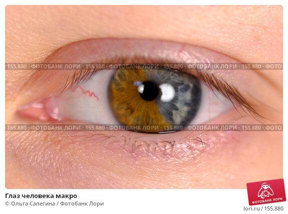 Глаз человека макро, фото № 155880, снято 14 июля 2007 г. (c) Ольга Сапегина / Фотобанк Лори