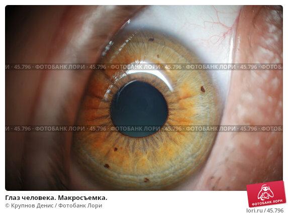Глаз человека. Макросъемка., фото № 45796, снято 3 февраля 2007 г. (c) Крупнов Денис / Фотобанк Лори