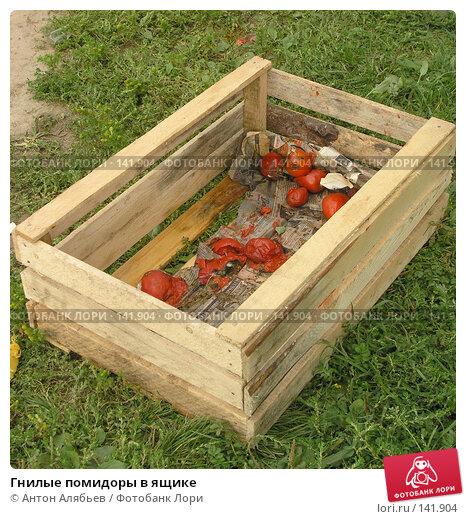 Гнилые помидоры в ящике, фото № 141904, снято 4 сентября 2005 г. (c) Антон Алябьев / Фотобанк Лори